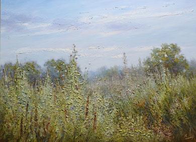 """69  """"Травы"""" Х.,м.  60х80   2012г."""