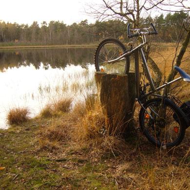Natur-Fahrradständer...   +   Naturens cyckelhållare...
