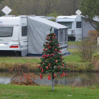 Mitte November...der erste Weihnachtsbaum auf dem Campingplatz...   *   Mitt av november ... och här står första julgran på camping...