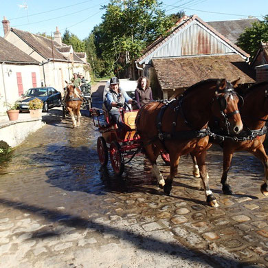 Sortie des attelages à Marchais Béton, passage du gué de la Chartreuse