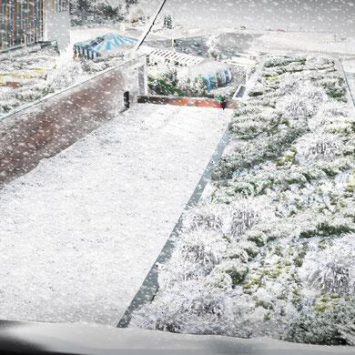 Терраса зимой. Совместно с Zinco GmbH Украина.