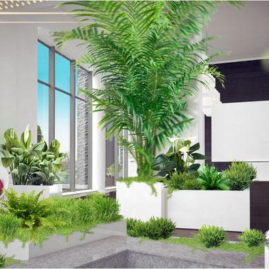 Озеленение интерьера. Совместно с Zinco GmbH Украина.