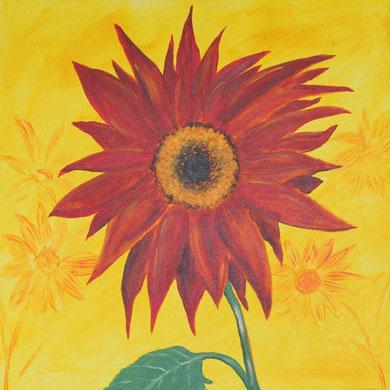 Sonnenblume, 70 x 70 cm, Öl auf Leinwand