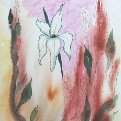 Lilie, modern Art,