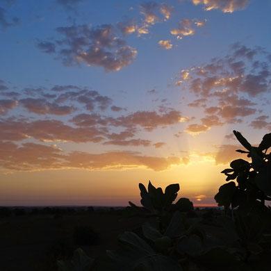 der freie Blick von unserer Höhe gen Osten ist ein Geschenk des Valongos für alle, die hier das Erwachen des Tages miterleben ...
