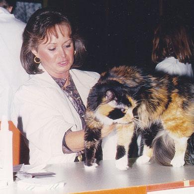 Birgitta las Richterin auf einer Katzenausstellung