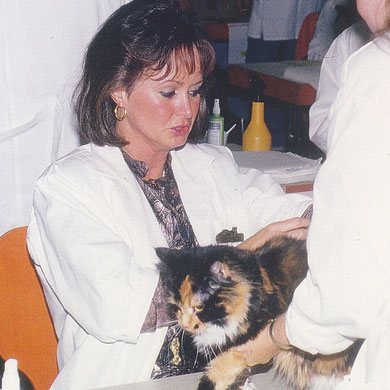 Birgitta als Richterin auf einer Katzenausstellung