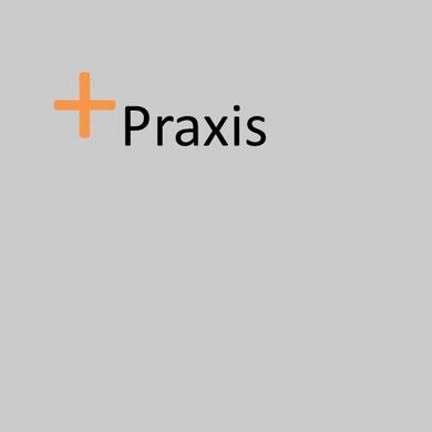 <h1>Praxis