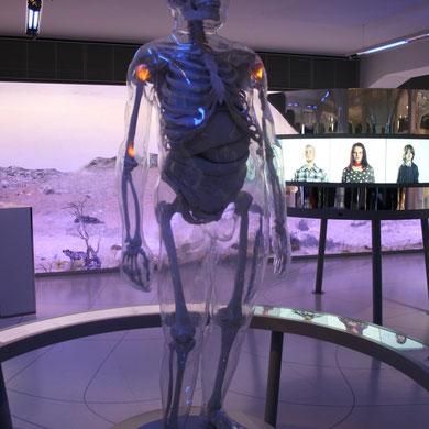 Eines der Prachtstücke der Ausstellung -  der gläserne Neandertaler; Foto meinert