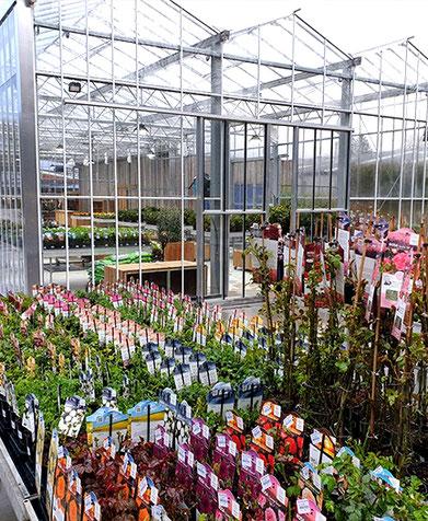 A l'Air libre - jardinerie en ligne