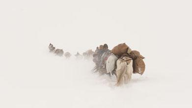 Die schönsten Bilder der Nomaden im Himalaya