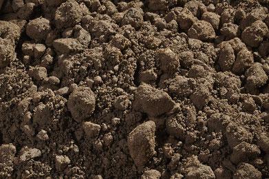 Rasensubstrat für Schotterrasen 0-16
