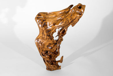 Sculpture · Tropical Driftwood · S1022#sculpture#bowl#coffeetable#woodworking#interiordesign#woodsculptures#art#woodart#wooddesign#decorativewood#originalartwork#modernwoodsculpture#joergpietschmann#oldwood