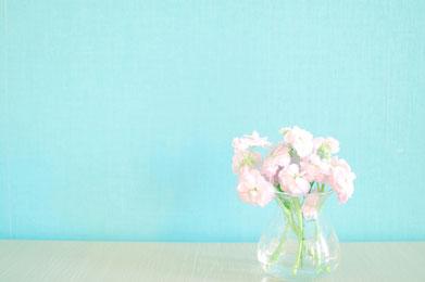 ページが開かれた洋書のうえに無造作に置かれた春の花たち。