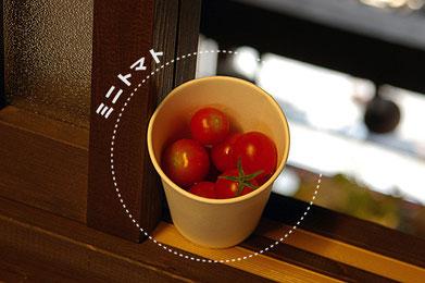 当店のご近所さんが栽培されたミニトマトをいただきました^^