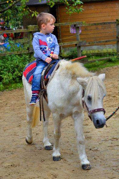 Farmfest der Kinder- und Jugendfarm Bremen 50