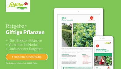giftige pflanzen im garten kgv luthenburg e v gelsenkirchen. Black Bedroom Furniture Sets. Home Design Ideas