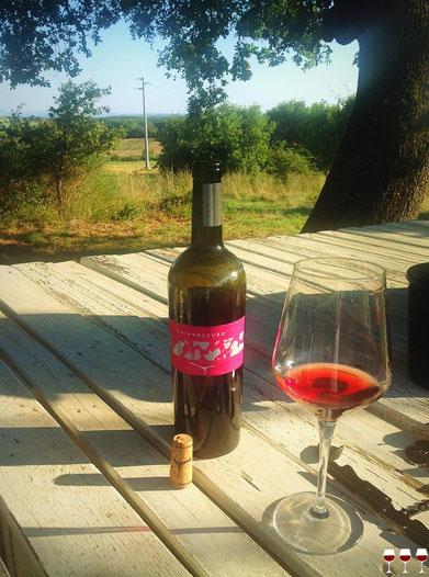 Toscana. Itinerari di vino. Arezzo, Tunia. Foto Blog Etesiaca.