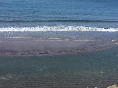 今日は海が澄んでいました♪