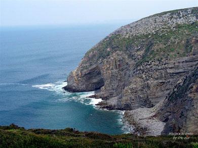 Bild: Cap de la Chèvre Bretagne