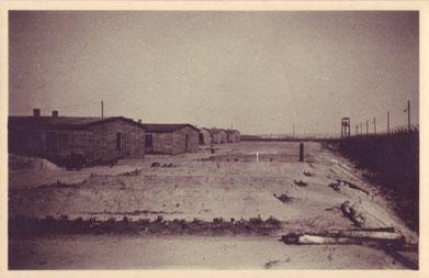 Massengräber im KZ-Bereich des Stalag X B nach der Befreiung, fotografiert von August Boelaars. Das weiße Kreuz deutet die Grabstelle von Daniel van Vugt an.