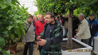 Gartenbaumeister Ulrich Fähnle in einem der Überwinterungsquartiere.