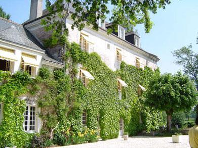 B&B-Loire-Valley-Chancay-Vouvray-vineyard-Amboise-Tours-nice-housing-swimming-pool