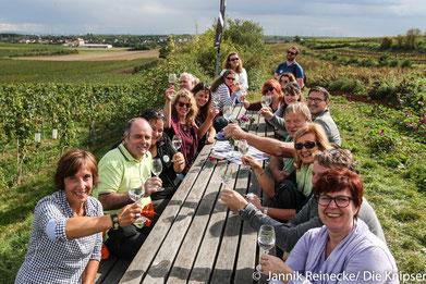 Mit genügend Pausen in den wunderschönen Weinbergen Osthofens wurde die diesjährige Weinwanderung bestritten.