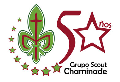 Bandera 50 aniversario Scoout Chaminade