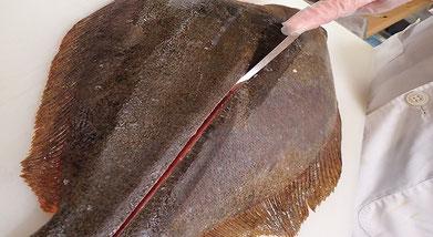 宅配寿司 平目のおろし方 仕込