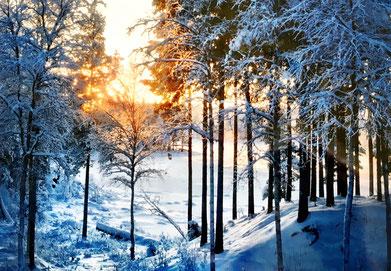 schwedisch-lappland-winterwunderland