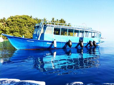 bali-ubud-reisfelder