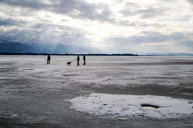chiemsee-zugefroren