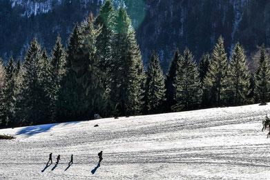 Schneetouren von der Alten Gendarmerie Übersee aus