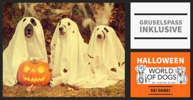 Hundeschule, Butzbach, Hund, Training, Halloween. Fun-Dog, Hundetraining