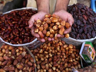 Incollable sur la datte marocaine