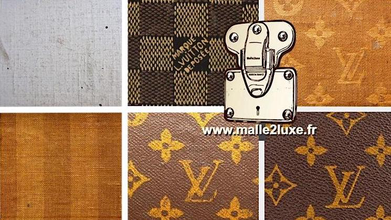 Malle Louis Vuitton expert paris