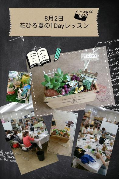 夏の1Dayレッスン 花ひろ お花教室 講習会 開催 多肉植物 鯖江 福井