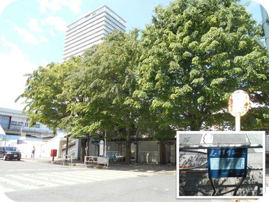 画像:東村山駅 東口 志村けんの木