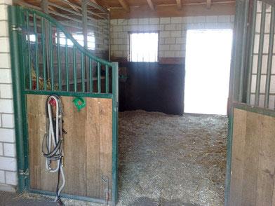 Grosse und trockene Liegeflächen der Pferdeboxen