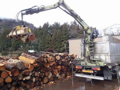 大型トラックによる大径木の搬出