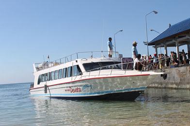Mahi Mahi Dewata Fast Boat, Bali - Lombok Fastboat
