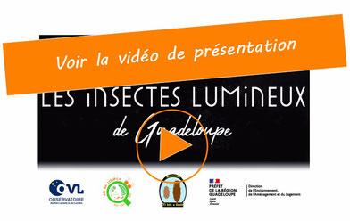 vidéo de présentation de l'Observatoire des lucioles