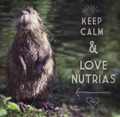 keep calm and love nutrias