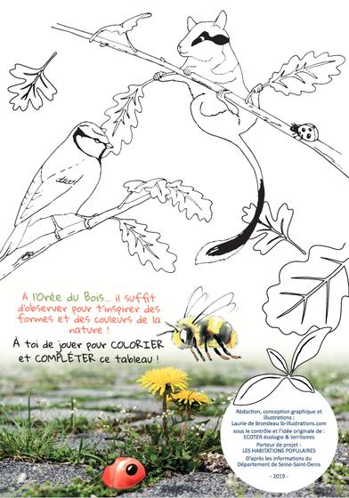 coloriage nature, biodiversité, guide pédagogique, livret, ludique, nature en ville