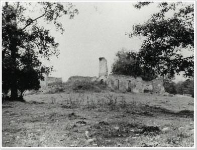 Ruine des Gutshauses,  Foto von 1958