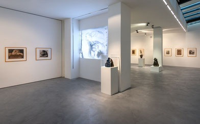 Ausstellung Käthe Kollwitz im Museum Lothar Fischer. Foto: Andreas Pauly.