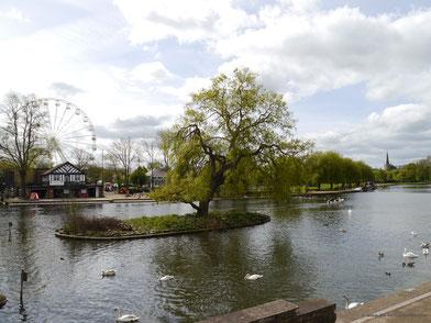 Grünanlage mit dem Fluss Avon in Stratford-upon-Avon