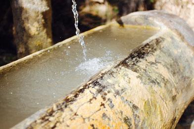 Wassertropfen in Trinke