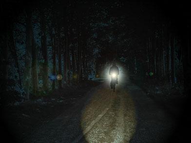 Radfahrer mit Licht / Bild von Dieter_G auf Pixabay